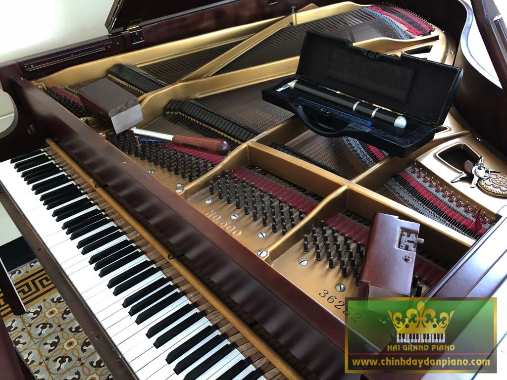 chinh-day-dan-grand-kawai-no.500-1