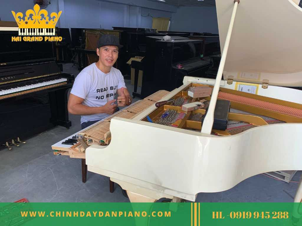 CHINH-MAY-DAN-GRAND-PIANO_002