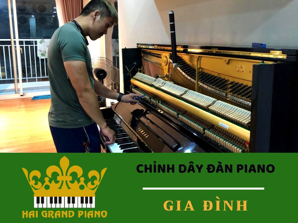 chinh-day-dan-piano-gia-dinh
